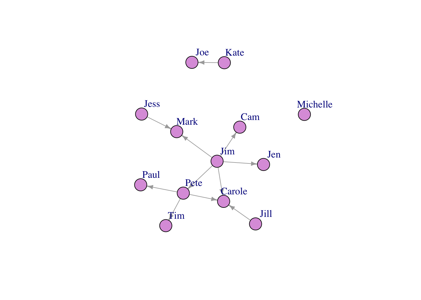 Visualizing and Describing Networks